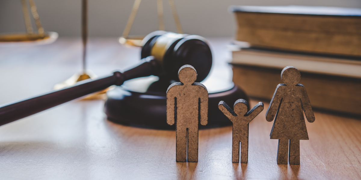 Avenu Insights & Analytics Announces Its Statewide Implementation for South Carolina Family Courts